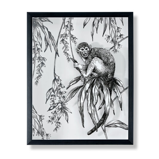 Saimiri Monkey Framed Print, , wallpaperIT