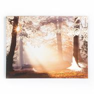 Metallic Forest Printed Canvas Wall Art, , wallpaperIT