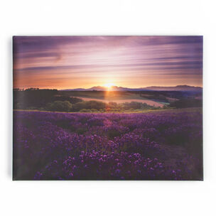 Lavender Sunset Printed Canvas Wall Art, , wallpaperIT