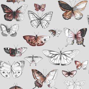 Butterflies Orange Wallpaper, , wallpaperIT