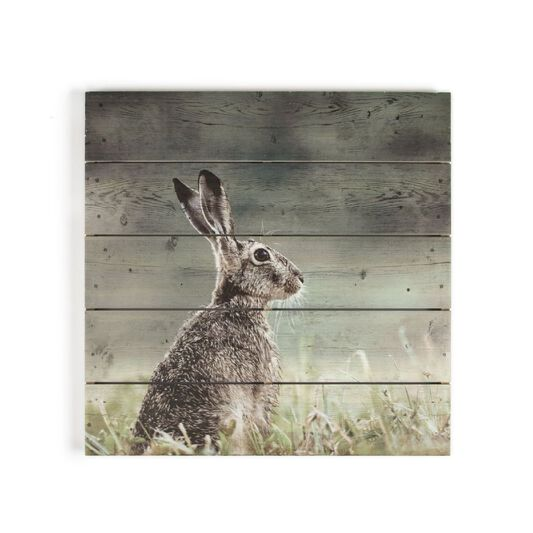 Hare Print On Wood Wall Art, , wallpaperIT