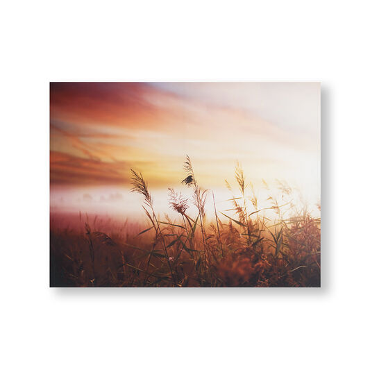 Morning Sunrise Meadow Printed Canvas Wall Art, , wallpaperIT