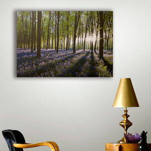 Bluebell Landscape Printed Canvas Wall Art, , wallpaperIT
