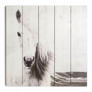 Horse Print On Wood Wall Art, , wallpaperIT