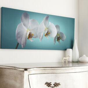 Teal Orchid Wall Art, , wallpaperIT