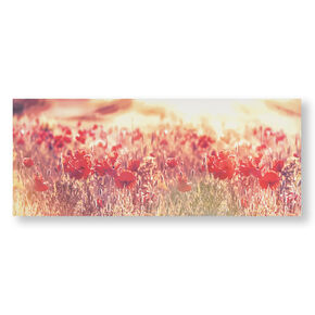 Peaceful Poppy Fields Printed Canvas Wall Art, , wallpaperIT