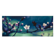 Petite Petals Printed Canvas Wall Art, , wallpaperIT