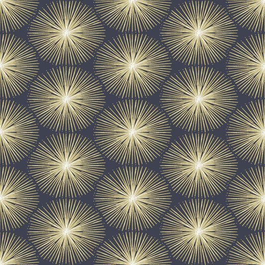 Fire Circle Blue Wallpaper, , wallpaperIT