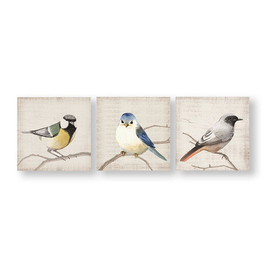 Perched Birds Canvas Wall Art, , wallpaperIT