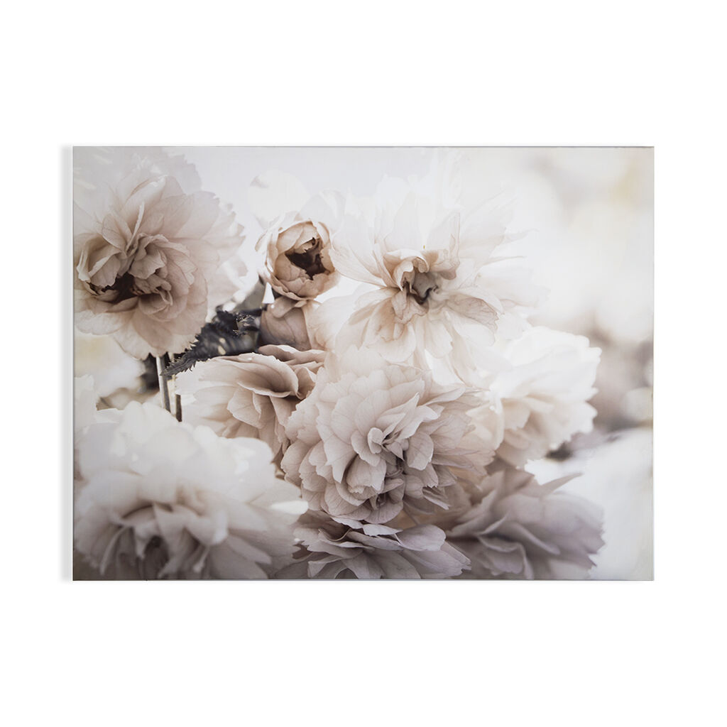 Tranquil Blossoms Printed Canvas Wall Art, , wallpaperIT