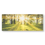 Tranquil Forest Fields Printed Canvas Wall Art, , wallpaperIT