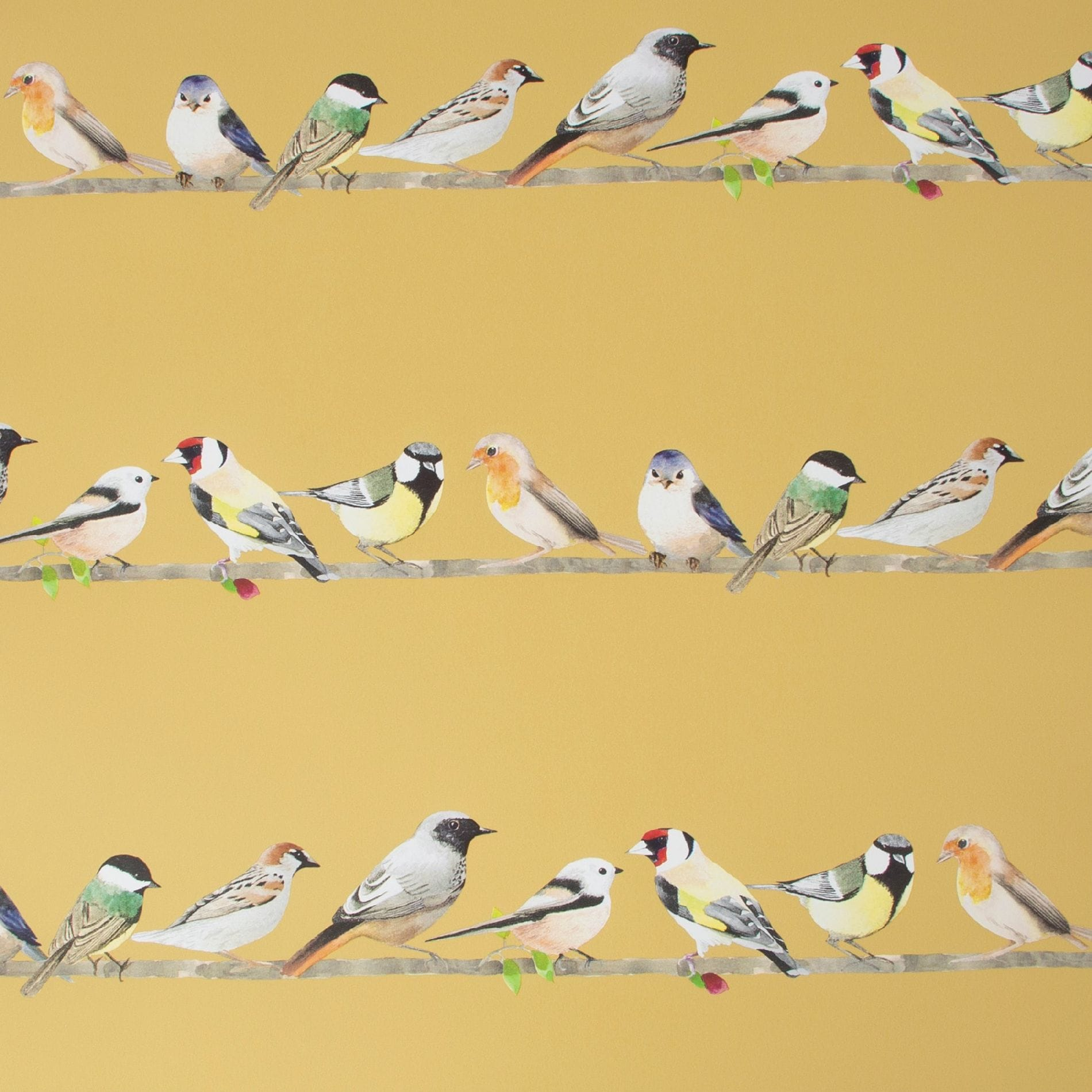 Fresco Tweeting Ochre Birds Wallpaper, , wallpaperIT