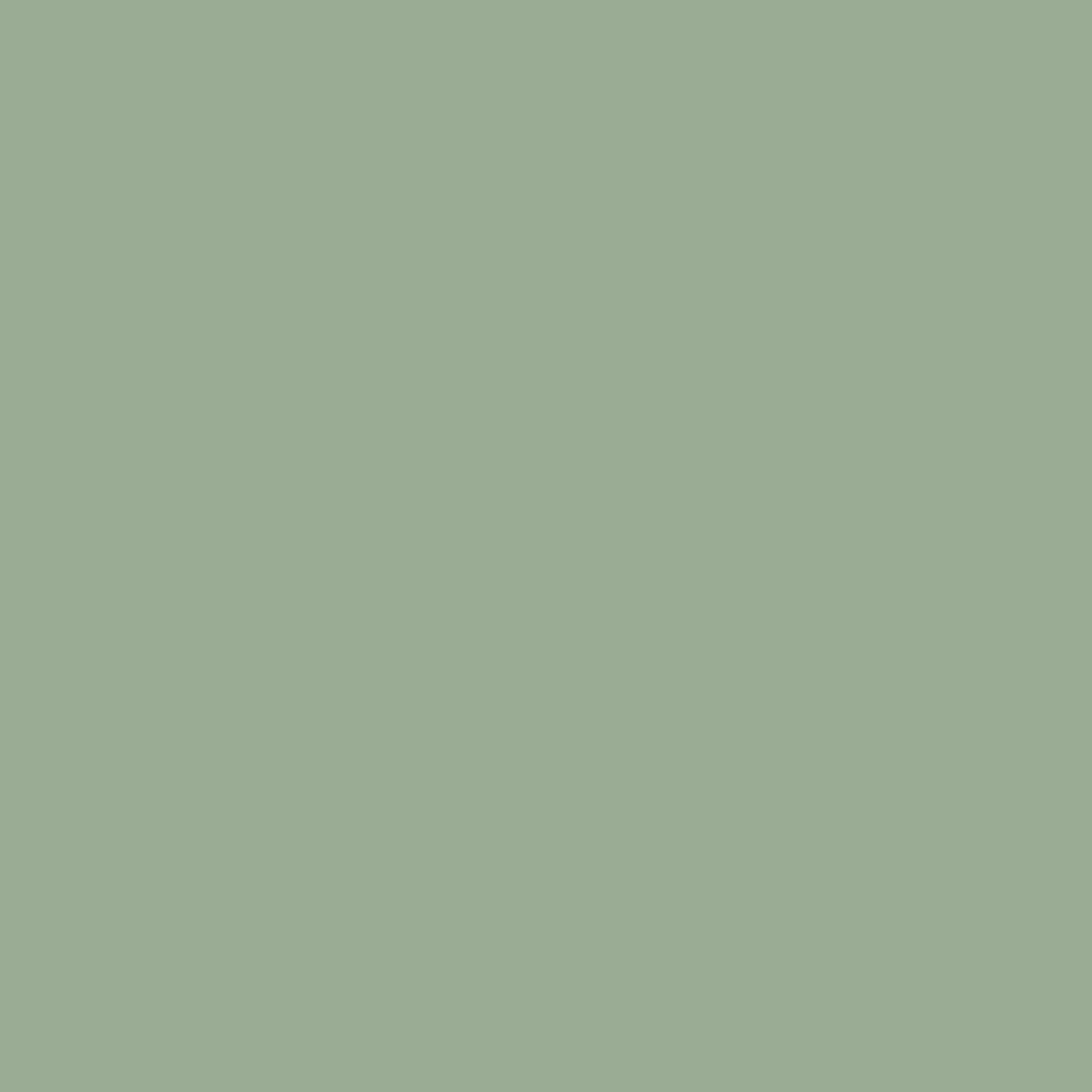 Litho Green Plain Wallpaper, , wallpaperIT